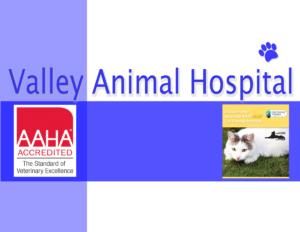 valley animal hospital logo 2