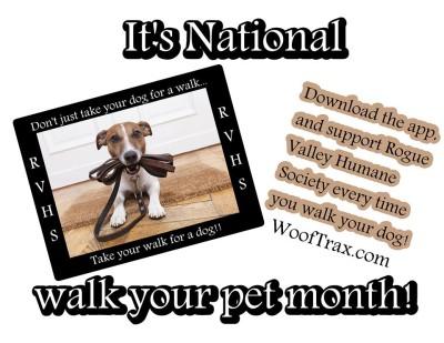 walk your pet