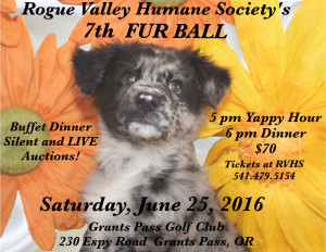 furball 2016 final kellee